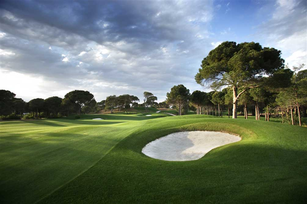 Montgomerie Maxx Royal 16